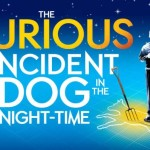 Review The Curious Incident of the Dog in the Night-time, The Gielgud Theatre by Hannah Goslin