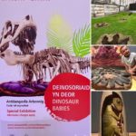 Review Dinosaur Babies, National Museum Cardiff by Third Act Critic, Jane Bissett