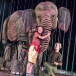 Review Running Wild, Theatre Royal Plymouth by Hannah Goslin
