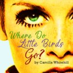 Review Where Do Little Birds Go?- No Boundaries Theatre by Emily Garside