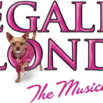 Review: Legally Blonde The Musical, New Theatre – By Eloise Stingemore